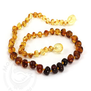 Amber Goose Teething Necklace - Rainbow
